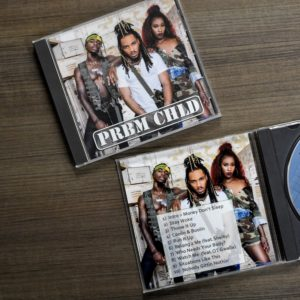 Custom CD Inserts for Jewel Cases Printed Fast and Cheap - BandPosterPrinting.com